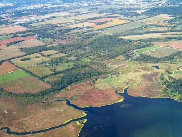 Wetlands-640x480