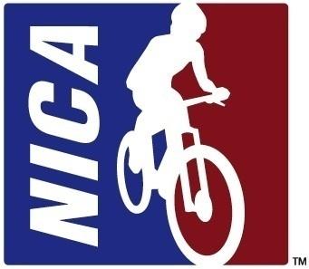 nica logo only