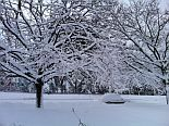 snowyNE2