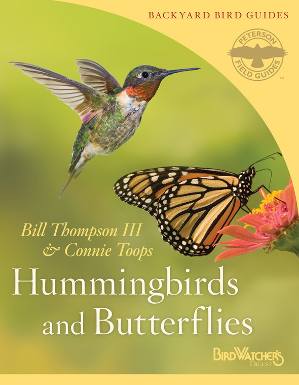 hummingbirds and butterflies hres