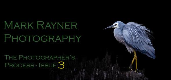 Issue 3 Header