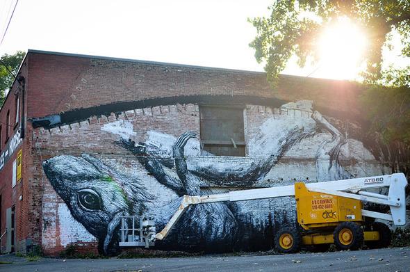 brooklyn-street-art-roa-andrew-franciosa-living-walls-albany-1-web
