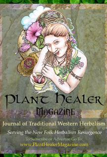 Plant-Healer-Magazine-Banner-3x4vertical-72dpi