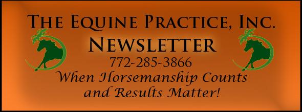 News Letter Header2 2011