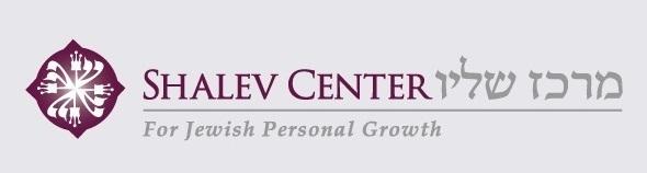 Shalev Logo Long Gray (2)
