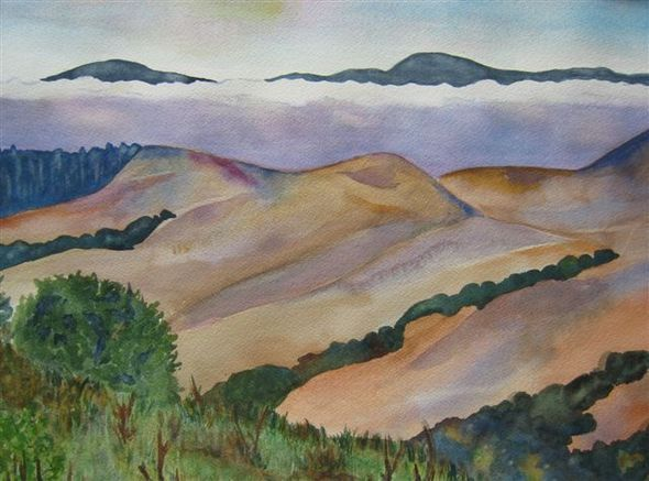 Wildcat Canyon By Linnea Gershenberg