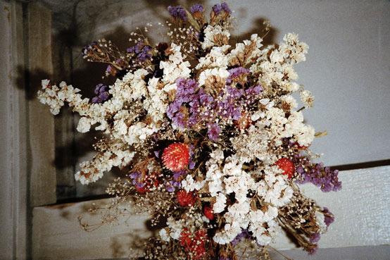 fleurs-sonar
