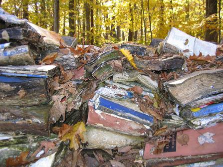 Wall of Books Fall
