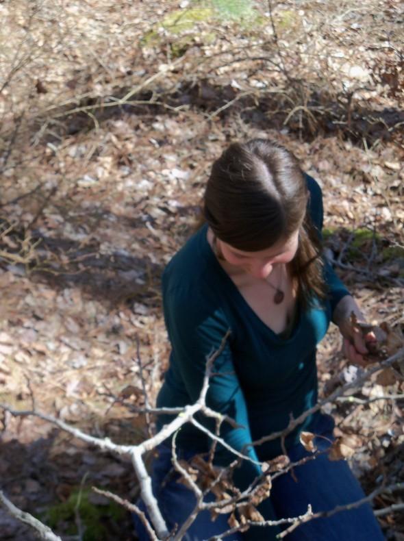 Quabbin Poplar Hike 100