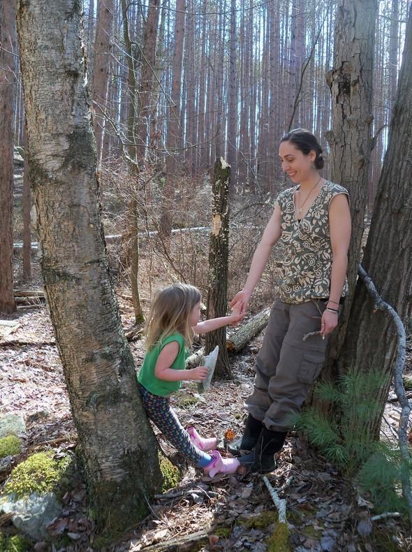 Quabbin Poplar Hike 114
