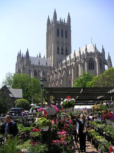national-cathedral-flower-mart11173-0