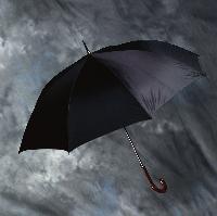 winterumbrella