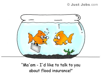 goldfish-cartoon-flood-insurance
