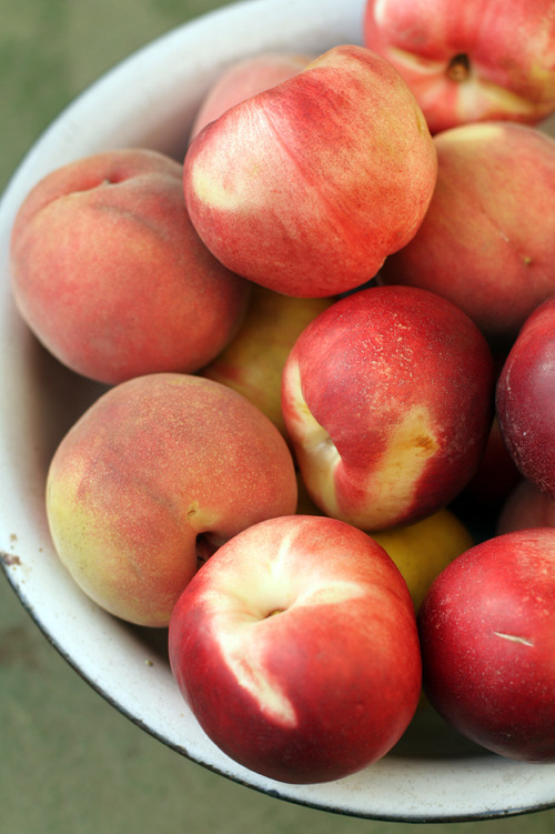 nectarine and peaches