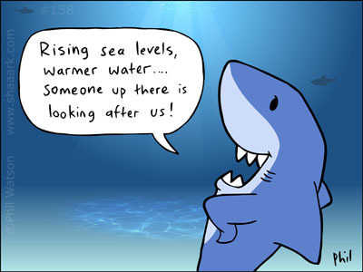 shark-cartoon-158
