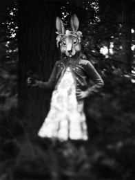 rabbitsusanspiritus-196x260