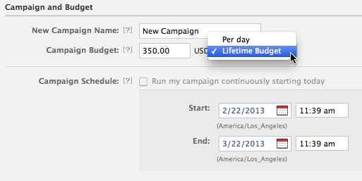 Campain and Budget Options within Facebook Ad Settings