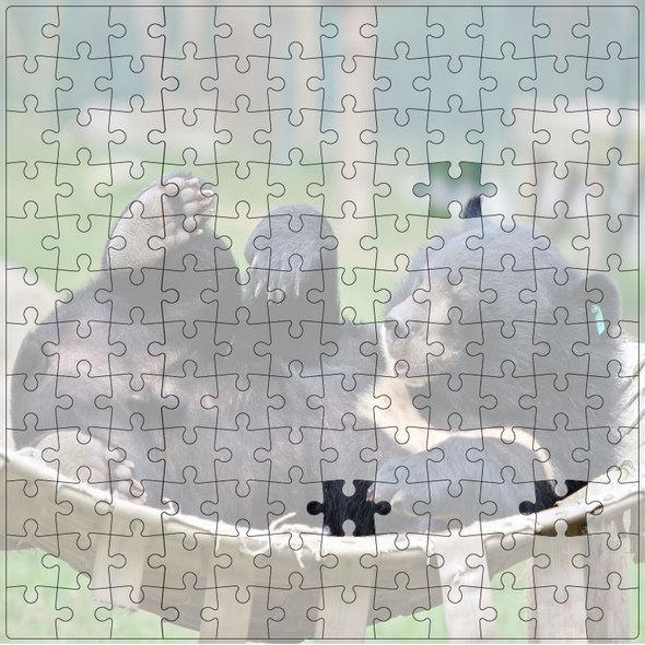 2013-Jigsaw-003