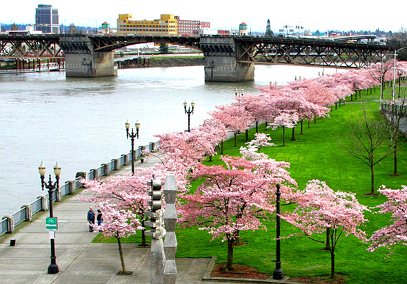 Waterfront Park, Portland