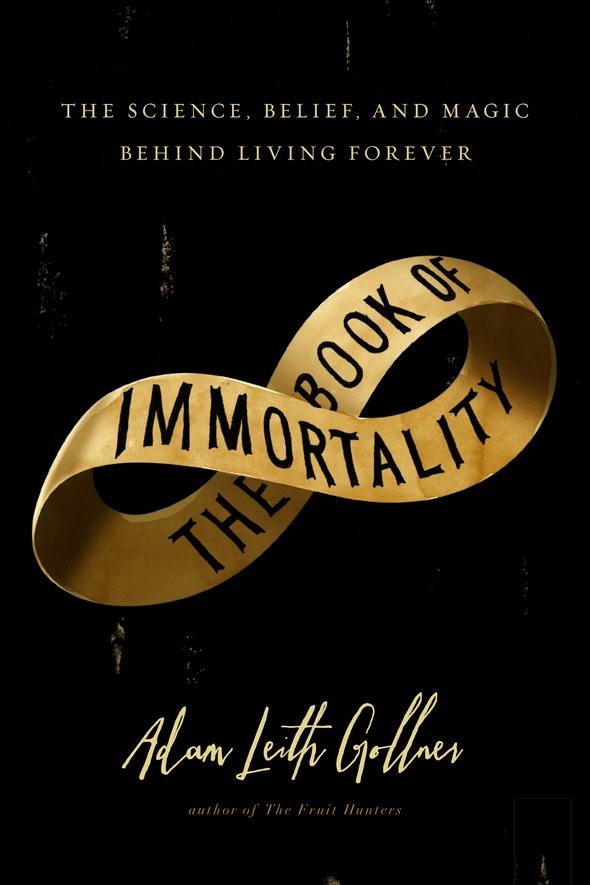 Book of Immortality jacket