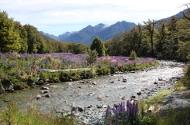 NZ mountains thumb