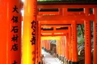 Kyoto gates thumb