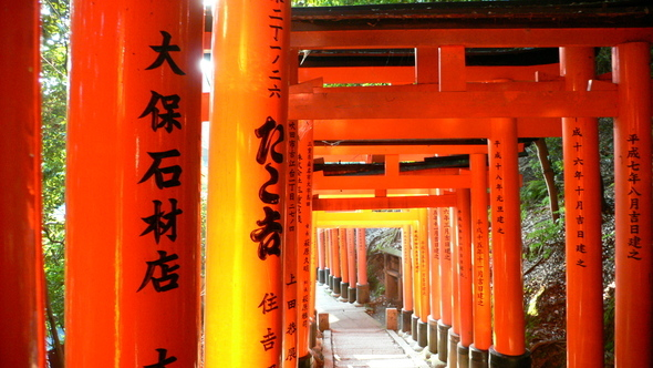 8 Fushimi Inari Taisha Shrine (76)