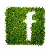 Facebook WEB ICONS - Greenpop