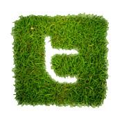 Twitter WEB ICONS - Greenpop