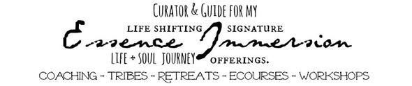 Curator-Guide1