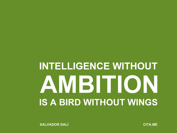 intelligence-wihout-ambition-is-a-bird-without-wings-2048x1536