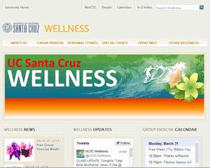 website screen capture