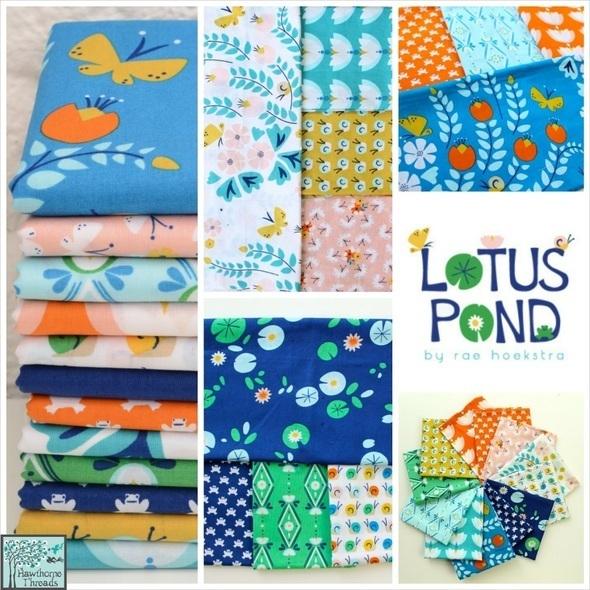 Lotus Pond Poster