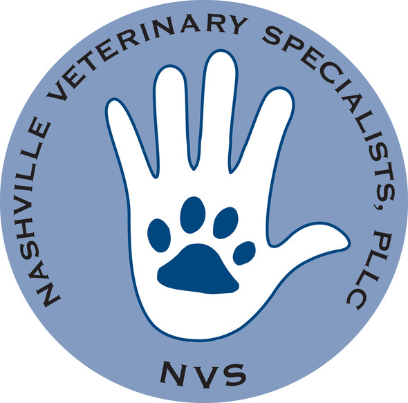 NVS Logo copy