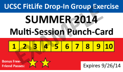 Summer Punch-card