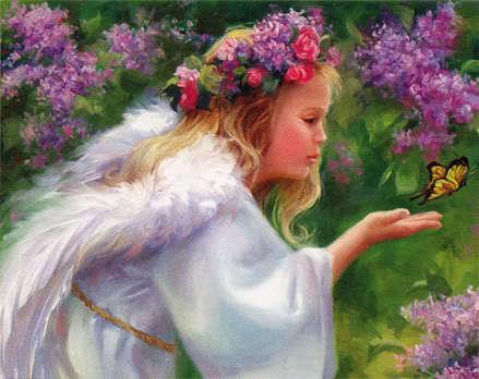 Angel Butterfly-1