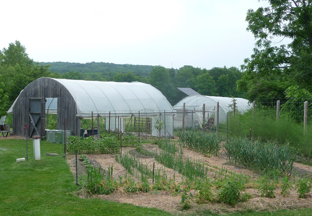 GodinGreen Garden WEB