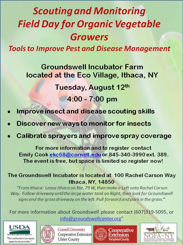 Scouting and Monitoring Field Day for Organic Growers Groundswell