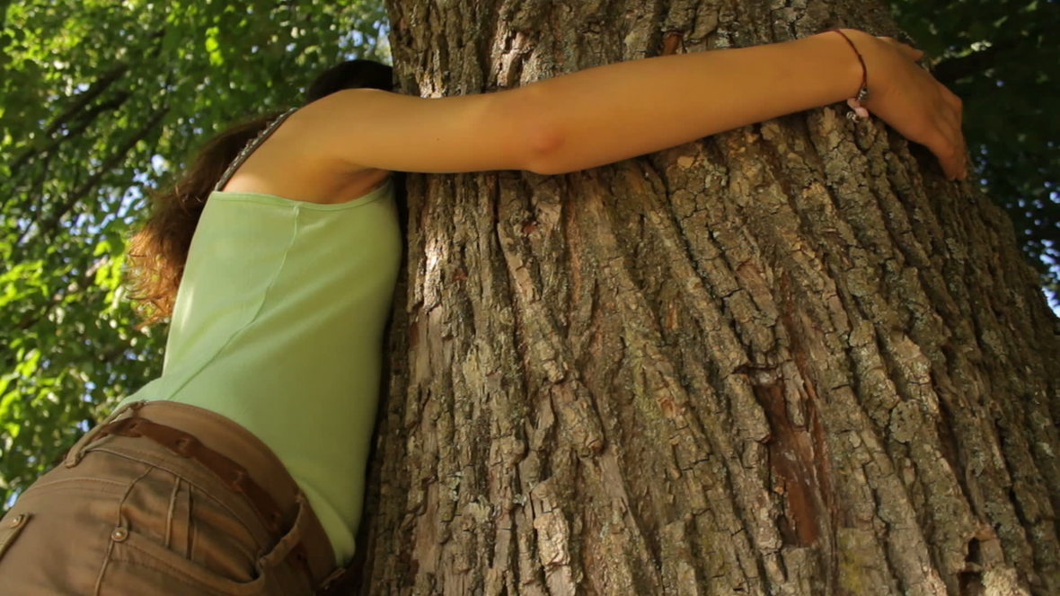 stock-footage-girl-coming-and-hugging-the-tree-save-the-nature-2