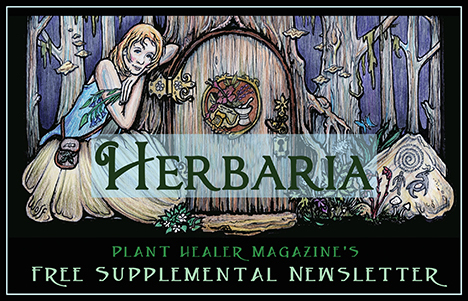 Herbaria Newsletter Bannersm
