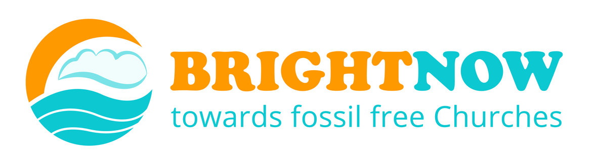 Bright Now Logo cropped