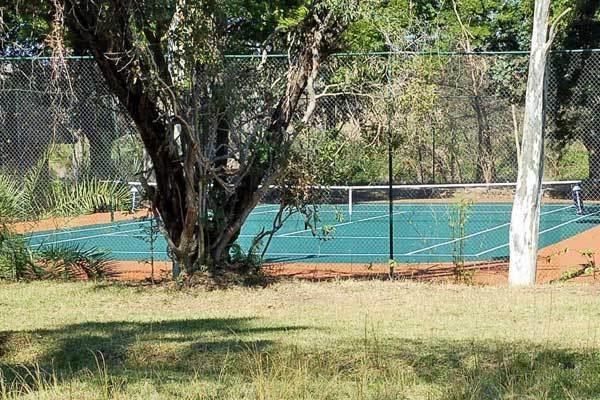 tennis new