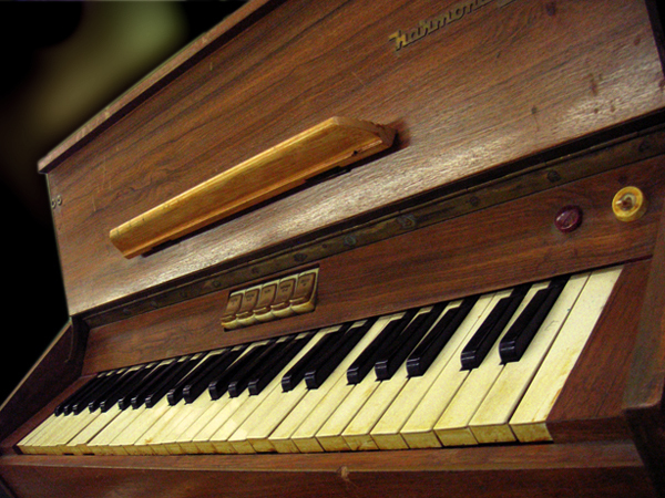 Accordions, Harmonium, Hammond and Transistor Organs
