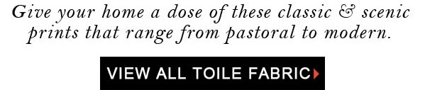 Timeless Toile Newsletter Title - Blog