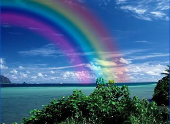 rainbow 6-1