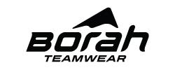 Borah Logo 250x100