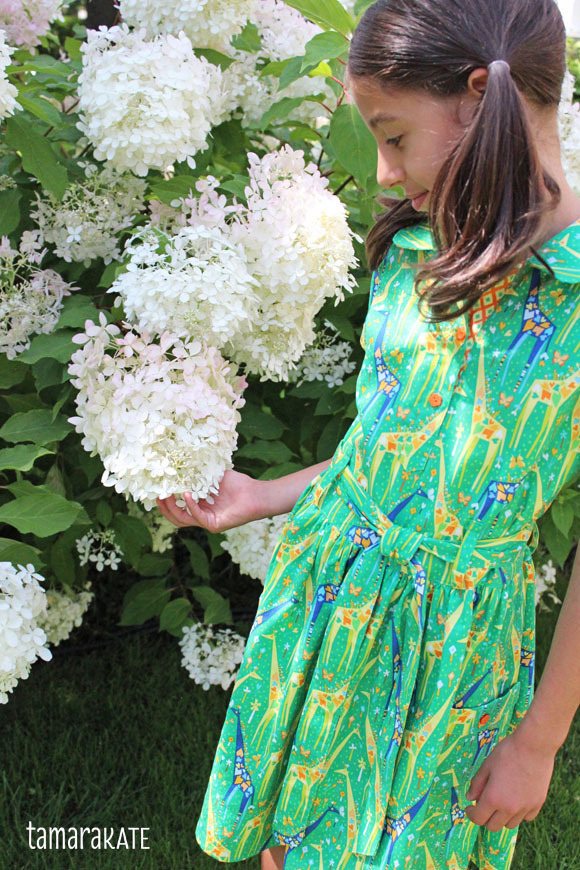 tamara-kate-stand-tall-dress3