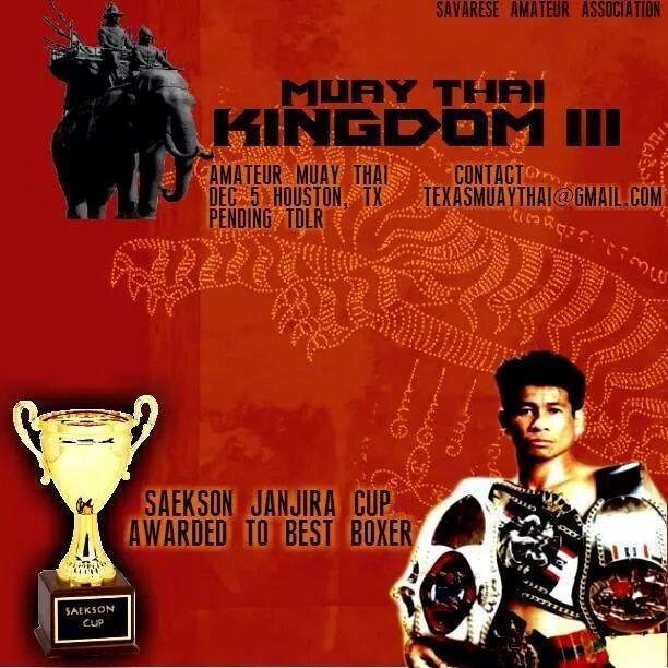 Muay Thai-Kingdom-Houston Tx