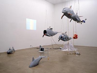 dolphininstall