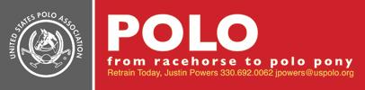 RRP-PoloLogoColor
